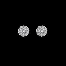 LILY AND ROSE Σκουλαρίκια Petite Miss Sofia/ Crystal Silver επιπλατινωμένος ορείχαλκος πέτρες Swarovski